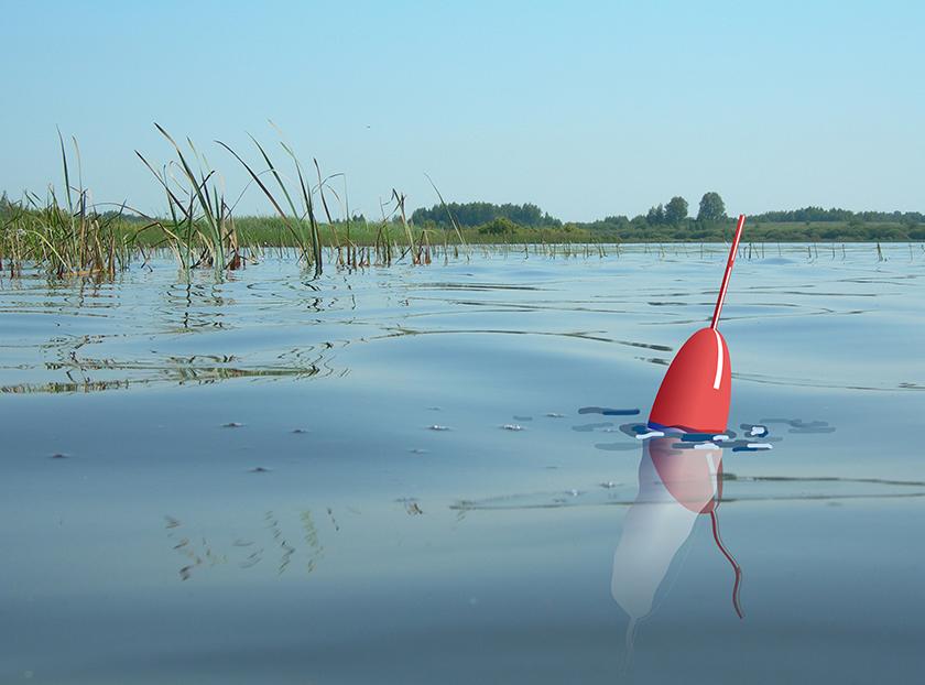 картинки о поплавке на воде
